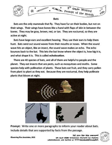 3rd Grade – September Writing Task