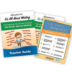 direct instruction lesson plan for 1st grade